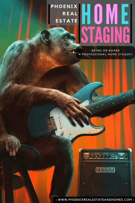 A monkey palying an electric guitar on stage