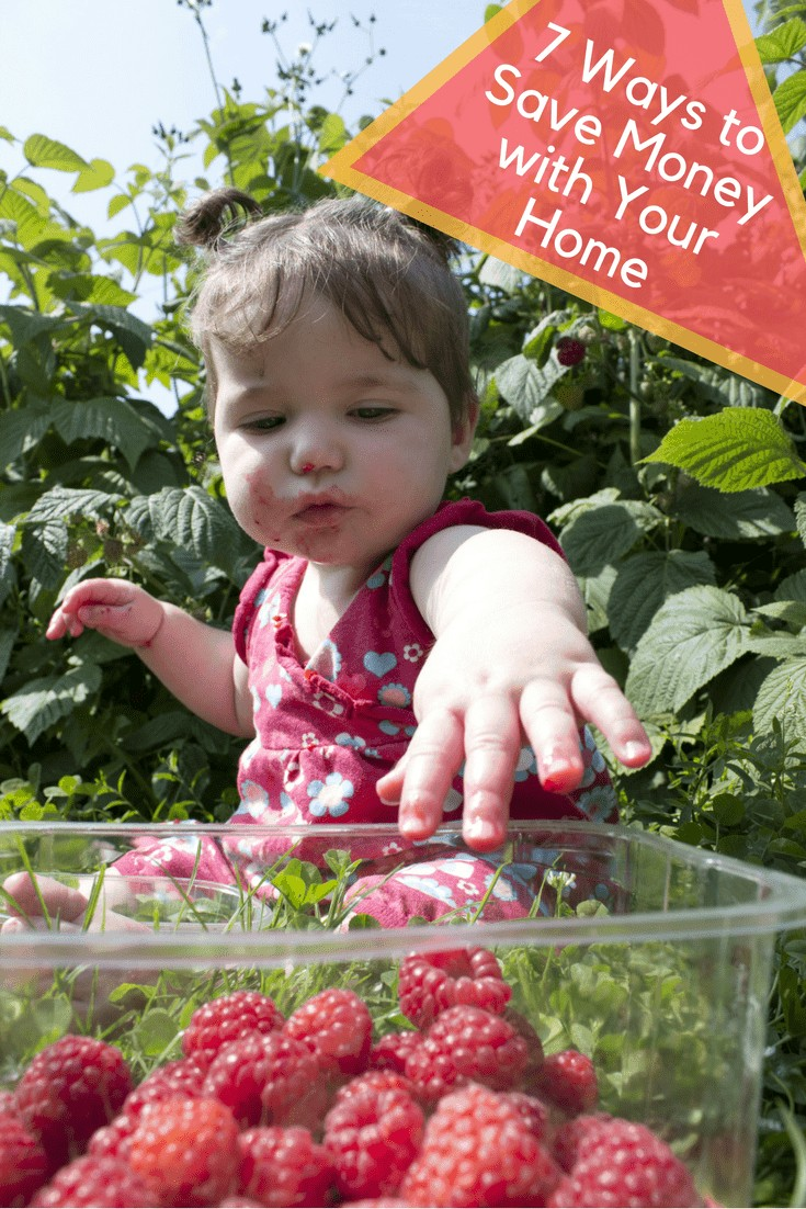 baby sitting in home garden eating raspberries from container