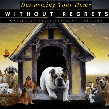 Downsizing Dog house when it became old