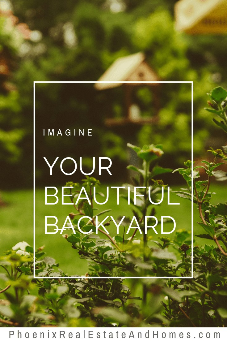 Imagine Your Beautiful Backyard