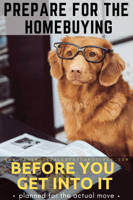 A dog with glasses is reading on how to become better at home buying