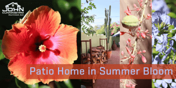 Patio Home in Summer Bloom Arizona