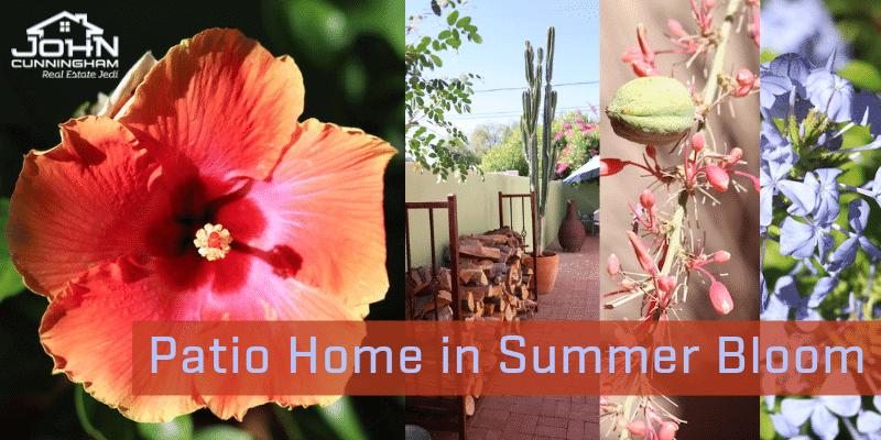 Patio Home in Summer Bloom Arizona