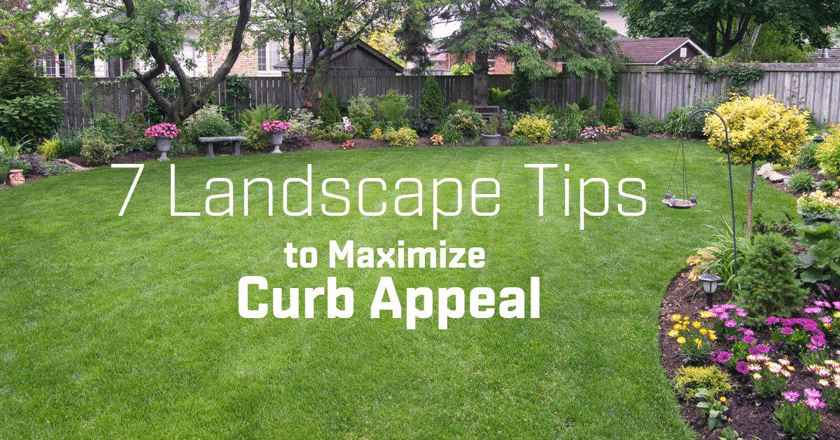 7 Landscape Tips to Maximize Curb Appeal